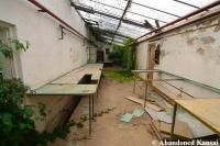 Deserted Plant Nursery Shed