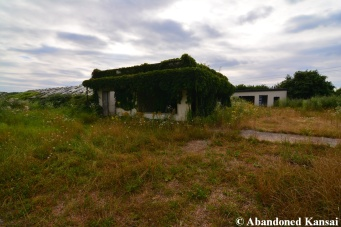 Deserted Plant Nursery