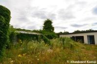 Overgrown Plant Nursery