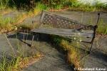 Beautiful Abandoned Bench