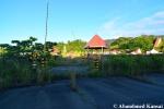 Overgrown Theme Park